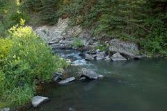 在Bozeman通行证附近的流动的河在蒙大拿 免版税库存图片