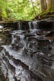 在Bozenkill的有排列的小瀑布 库存照片