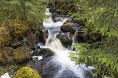 在Brattmon附近的小瀑布在瑞典 库存照片