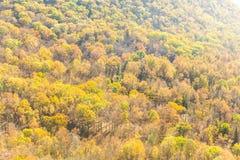 在Breackneck土坎的秋天颜色 免版税库存图片