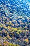 在Breackneck土坎的秋天颜色 库存图片