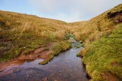 在Brecon烽火台的小河在威尔士 库存图片