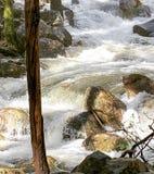 在Bridalveil秋天附近的河在优胜美地 库存照片
