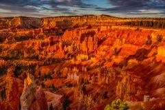 在Bryce峡谷的日出 库存照片