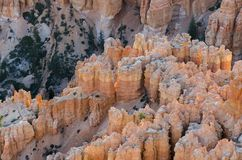 在bryce峡谷的风景 库存照片