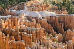 在bryce峡谷的风景 免版税图库摄影
