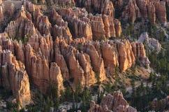 在bryce峡谷的风景 免版税库存照片