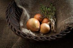 在Bu站立的一个柳条筐的葱和捆麝香草 图库摄影
