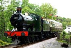 在Buckfastleigh驻地的火车 免版税图库摄影