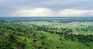 在Bwindi难贯穿的森林附近在乌干达 免版税库存图片