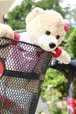 在bycle的可爱的熊 库存照片