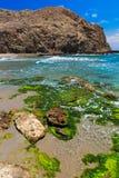在Cabo del加塔角,阿尔梅里雅,西班牙的海岸线 库存照片