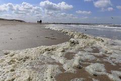 在cadzand,荷兰的海岸,在knokke,比利时附近,有海、海泡沫、海滩和沙丘的 免版税库存图片