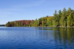 在Canoe湖的秋天颜色在阿尔根金族公园 图库摄影