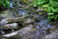 在Canyanka瀑布的Orest 免版税库存图片