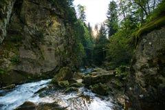 在Canyanka瀑布的Orest 免版税图库摄影