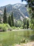 在Canyon国王的山小河 库存照片