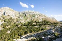 在Cap de Formentor -马略卡,西班牙-欧洲美丽的海岸的山蛇纹石  免版税库存图片