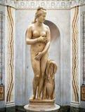 在Capitoline博物馆,罗马雕刻内阁金星 免版税库存图片