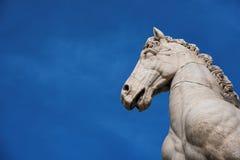 在Capitoline小山的马雕象 免版税库存图片