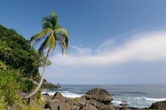 在Capurgana附近的通配哥伦比亚的加勒比海岸 免版税库存图片