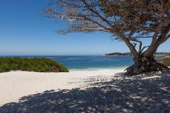 在Carmel的Carmel海滩,加利福尼亚 免版税图库摄影