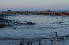 在Carrasqueira palaphite传统手工的钓鱼海港, Sado河出海口,葡萄牙的低潮 免版税库存照片