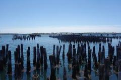 在Casco海湾,波特兰,缅因的老打桩 库存图片
