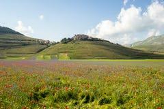 在Castelluccio二诺尔恰的进展的时间,意大利 免版税图库摄影