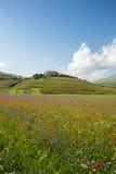 在Castelluccio二诺尔恰的进展的时间,意大利 图库摄影