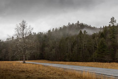 在Cataloochee谷的冬天,大烟山国民同水准 图库摄影