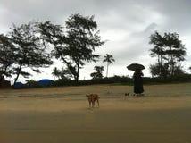 在Cavelossim海滩,果阿 免版税库存图片