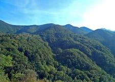 在Centovalli的绿色山, Tessin,意大利 库存照片
