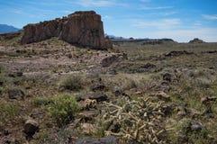 在Cerbat山麓小丘的沙漠巨型独石,亚利桑那 库存图片