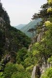 在Cerna山的石道路  库存图片