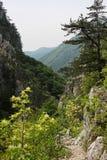 在Cerna山的石道路  免版税图库摄影