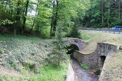 在Cesky Sternberk城堡,捷克附近的森林 库存照片