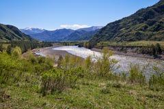 在Chemal村庄附近的河Katun,阿尔泰,俄罗斯 免版税库存照片