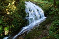 在chiangmai的瀑布 库存图片