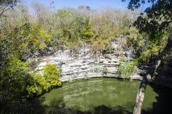 在Chichén Itzà ¡考古学区域的神圣的Cenote  免版税库存照片
