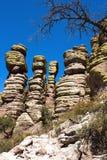 在Chiricahua的石不祥之物 库存图片
