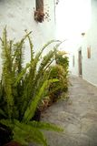在Chora镇的老部分的胡同 免版税库存图片