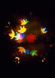 在Chriistmas树的不同的颜色bokeh光 免版税库存照片