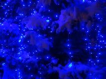 在Christmass以后的夜 图库摄影
