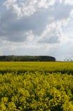 在Chrudim附近的蓝天 库存照片