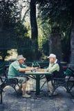 在Cismigiu公园的Chessplayers 免版税库存照片