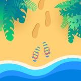在coas热带海滩的触发器与密林生叶 向量例证