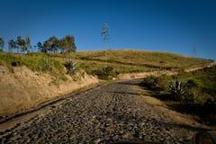 在Cochasqui废墟的路,考古学 免版税库存照片