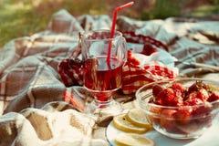 在coctail玻璃的红色莓果汁樱桃草莓 免版税图库摄影
