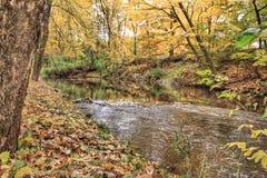 在Coldwater河的秋天颜色 库存照片